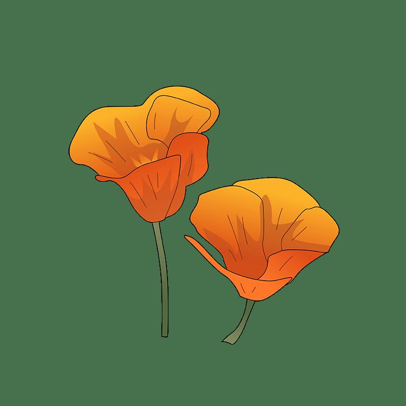 Bulbine orange flower