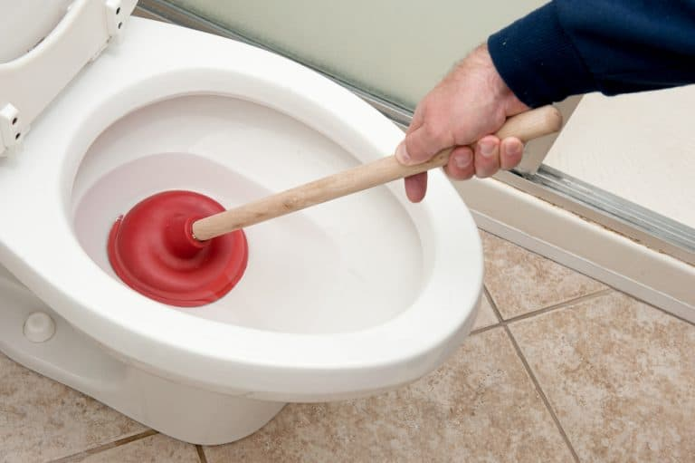 how to unclog a toilet with poop in it